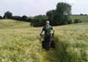 Reinstating a public right of way through a crop