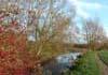 witney meadows