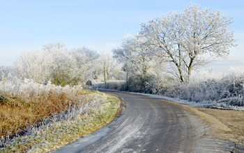 A frost covered country road