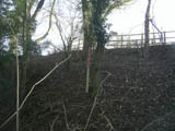 Picture of a steep bank with sparse trees and marking post
