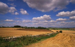Oxfordshire countryside