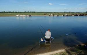 Fishing on Port Meadow Oxford