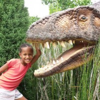 Child standing next to dinosaur