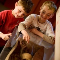 Two children looking at human skull in the Roman gallery.