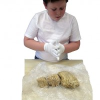 boy examining artifacts wearing gloves
