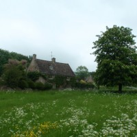 Grassy meadow and cottage on the first Bourton to Shipton section