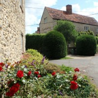 Red flowers and stone cottage in South Hinksey