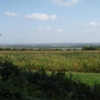 View from Badbury Hill